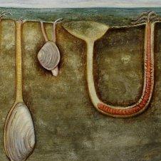 Wattenmeer Illustration